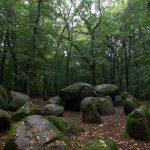 """Die """"Sloopsteene"""" bei Westercappeln. Eines der besterhaltenen Megalithgräber Nordrhein-Westfalens."""