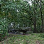 Megalithgrab im Wald bei Groß-Berßen im Emsland.