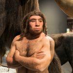 """Ein cooler Typ: der Neanderthaler (mit """"h"""")."""