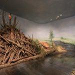 Diorama mit Biber und Eisvogel. Ab wo ist der Fluss gemalt?