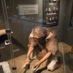 Archäologie spielt auch eine Rolle (natürlich!).